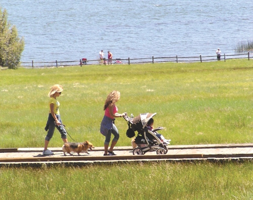 Women, dog, stroller on Alpine Pedal Path