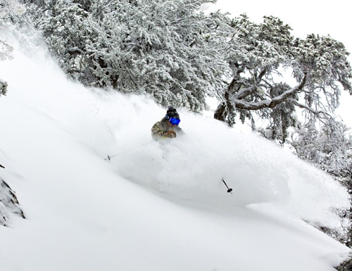 Powder at Bear Mountain resort