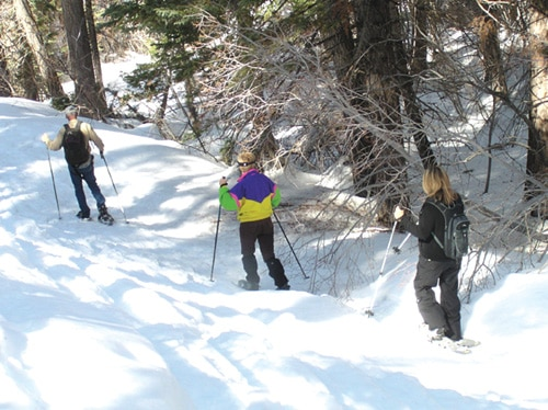 Snowshoe Demos, Adventure at Big Bear Discovery Center Winter Trails Day
